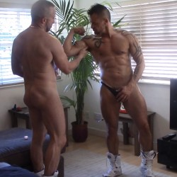 Worshipping the muscle